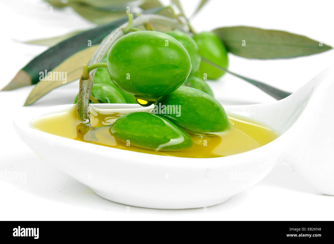closeup of a twig of olive tree with olives on a bowl with olive oil - Stock Image