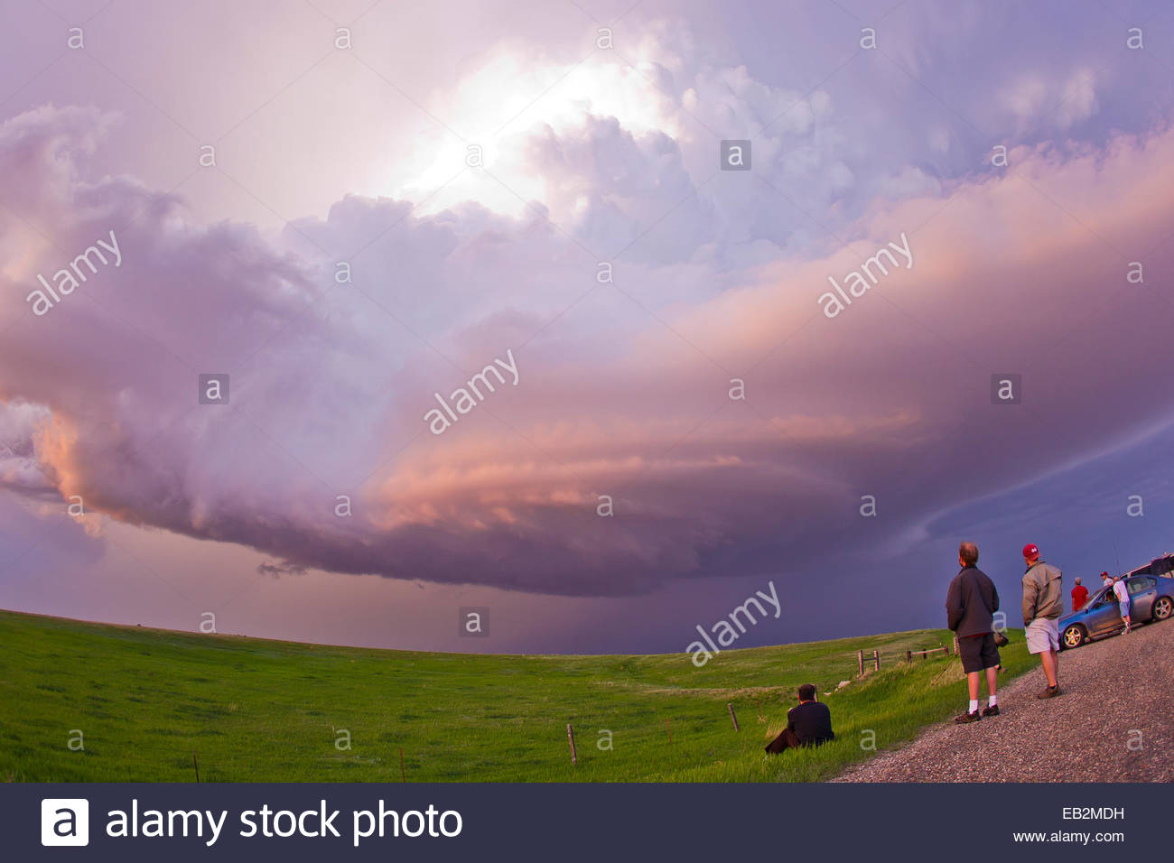 Storm chasers watch a decaying thunderstorm tinted pink and purple by sunset. - Stock Image