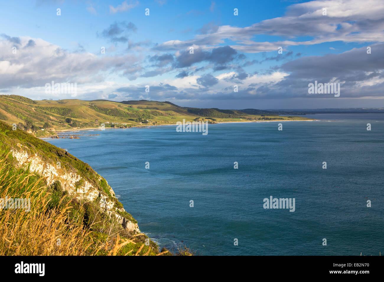 The Catlins in the morning light, Ahuriri Flat, Otago, New Zealand - Stock Image