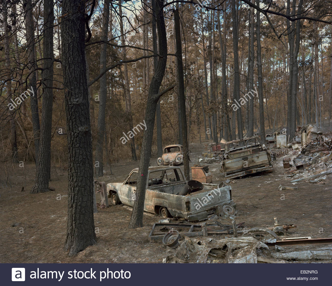 Burned out cars at a homesite that was completely destroyed in Bastrop, Texas fires. - Stock Image