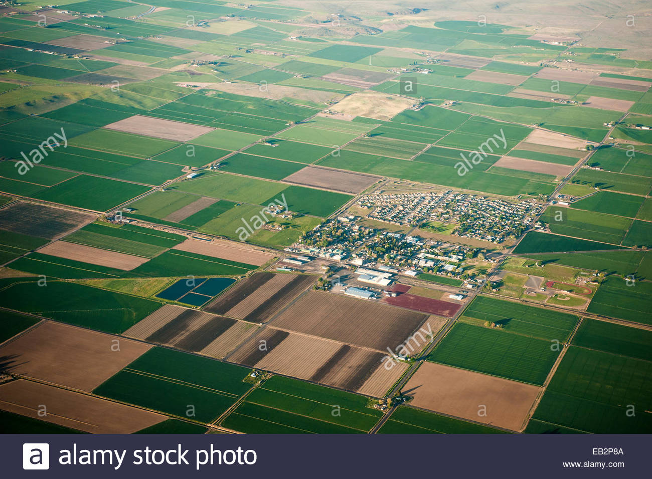 Aerial View Of Farm Land And A Small Farming Community In Oregon