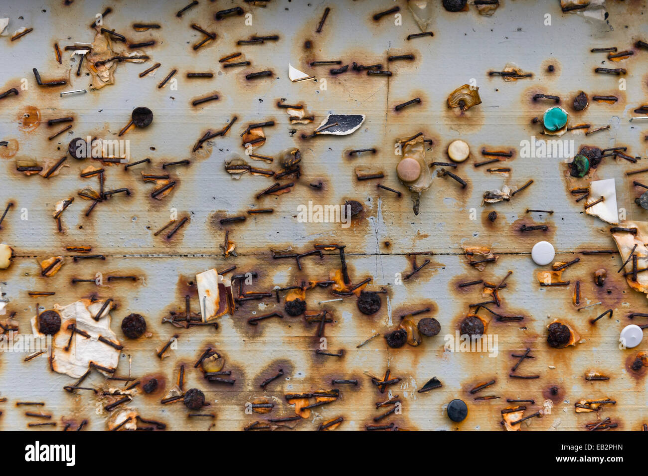Remnants of rusted tacks and staples on a board, Gásadalur, Vágar, Faroe Islands, Denmark - Stock Image