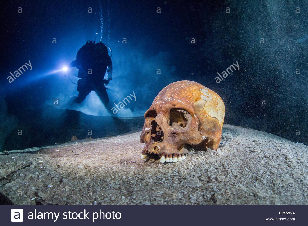 A Mayan skull found in a sacred cenote. - Stock Image