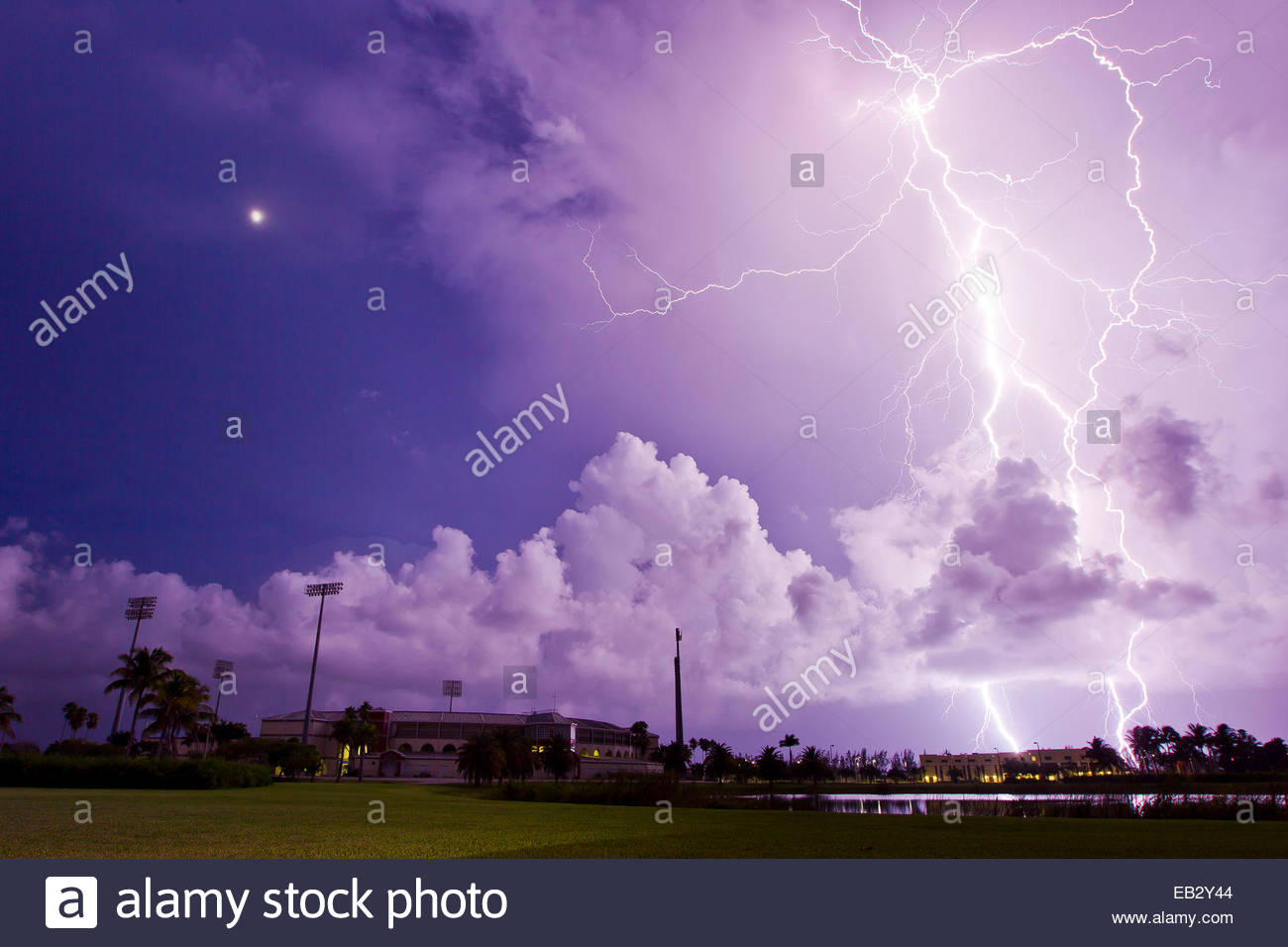 An intense lightning storm lights the sky purple at night. - Stock Image