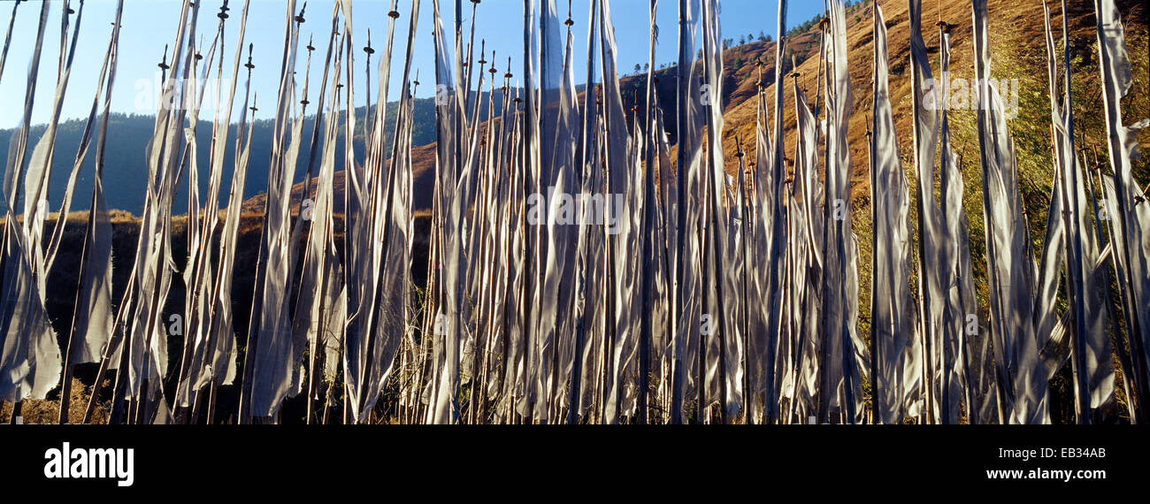 An alpine meadow full of prayer flags fluttering in the wind beneath a clear blue sky. - Stock Image