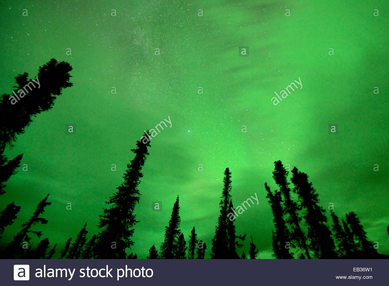 The clouds turns green as the lights happen above them. Stock Photo