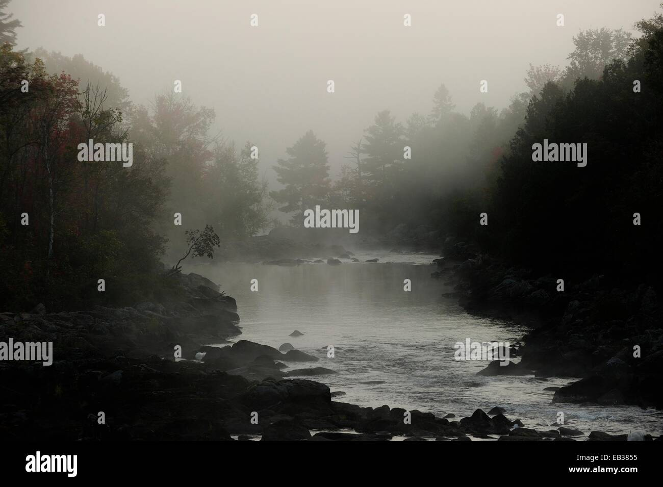Mystical, misty morning mood, Algonquin Provincial Park, Ontario Province, Canada - Stock Image