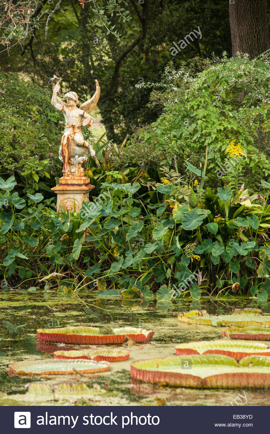 Lily pads and an antique iron statue add decoration to the Houmas House Plantation and Gardens. - Stock Image