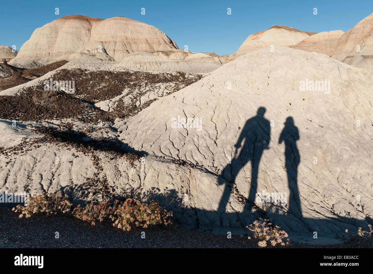 USA, Arizona, Petrified Forest National Park, Blue Mesa Trail, Shadow of hikers - Stock Image