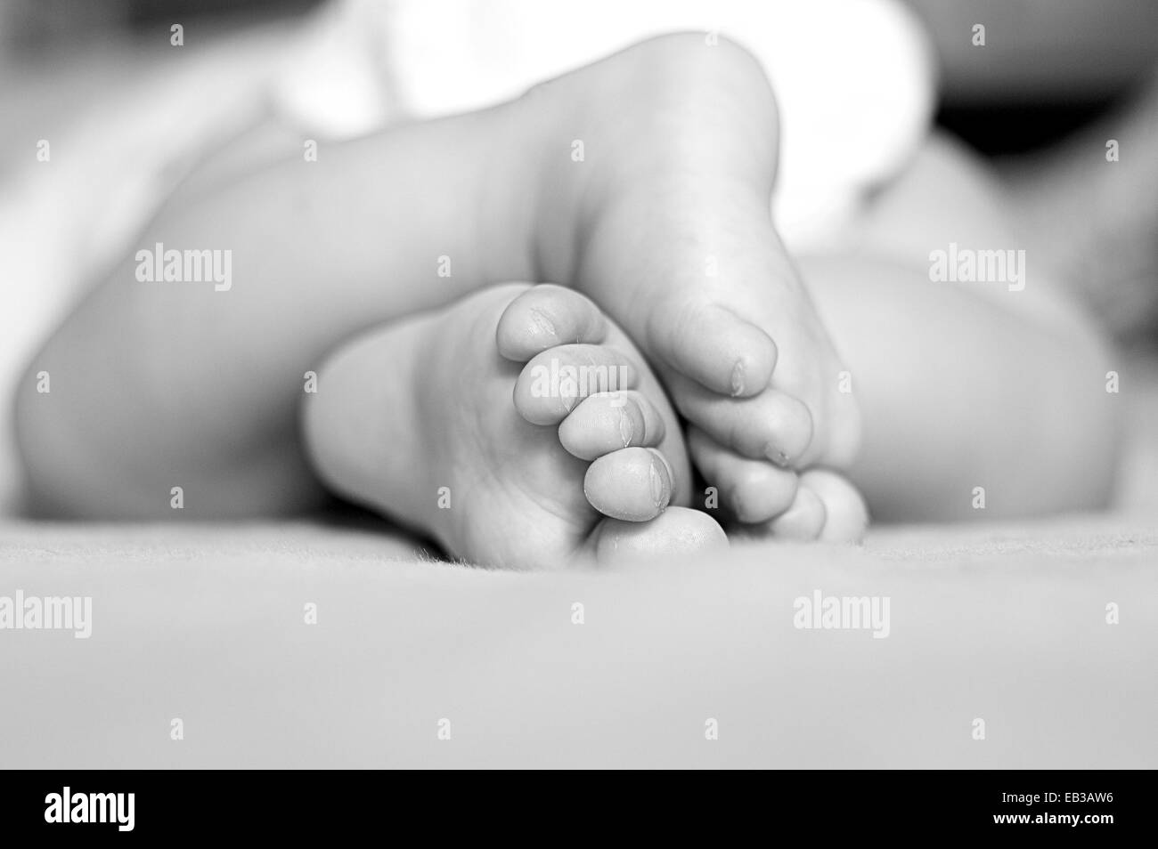 Close-up of baby (2-5 months) feet - Stock Image