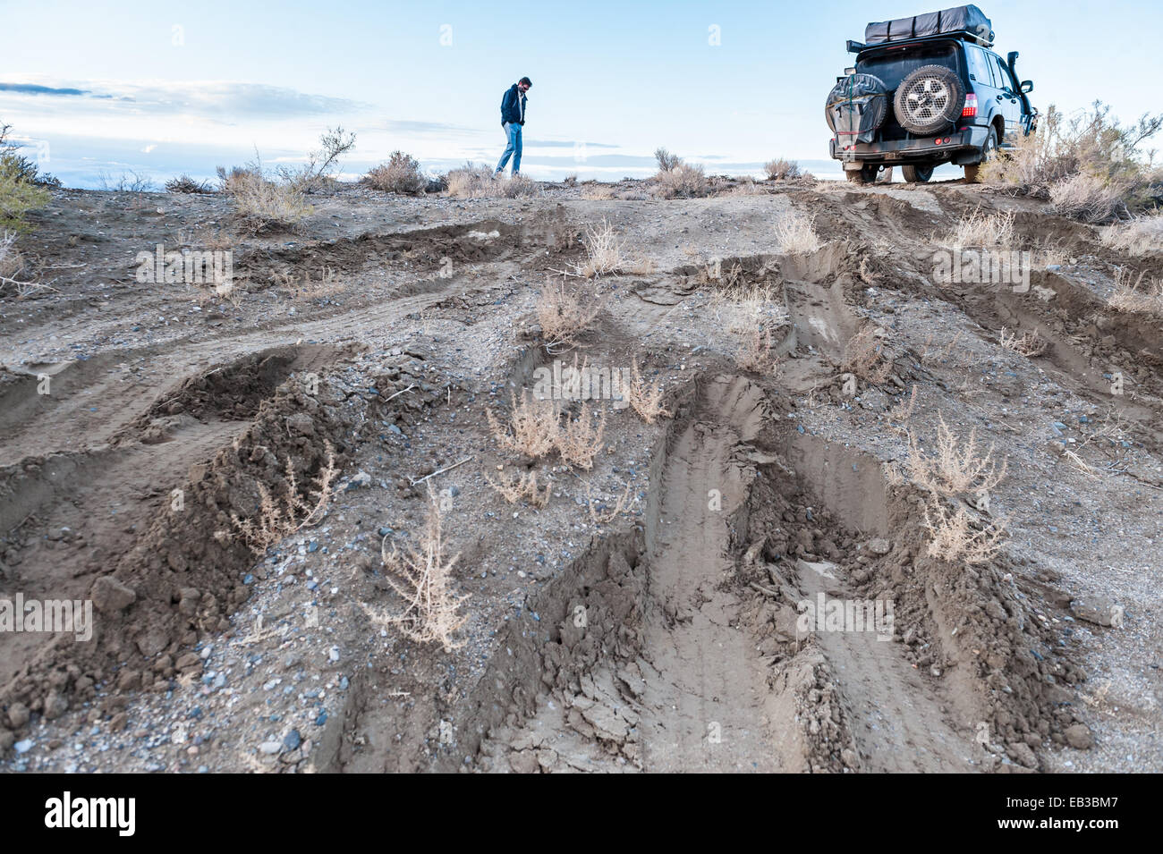 Man checking road conditions on muddy track, Black rock desert, Nevada, America, USA - Stock Image
