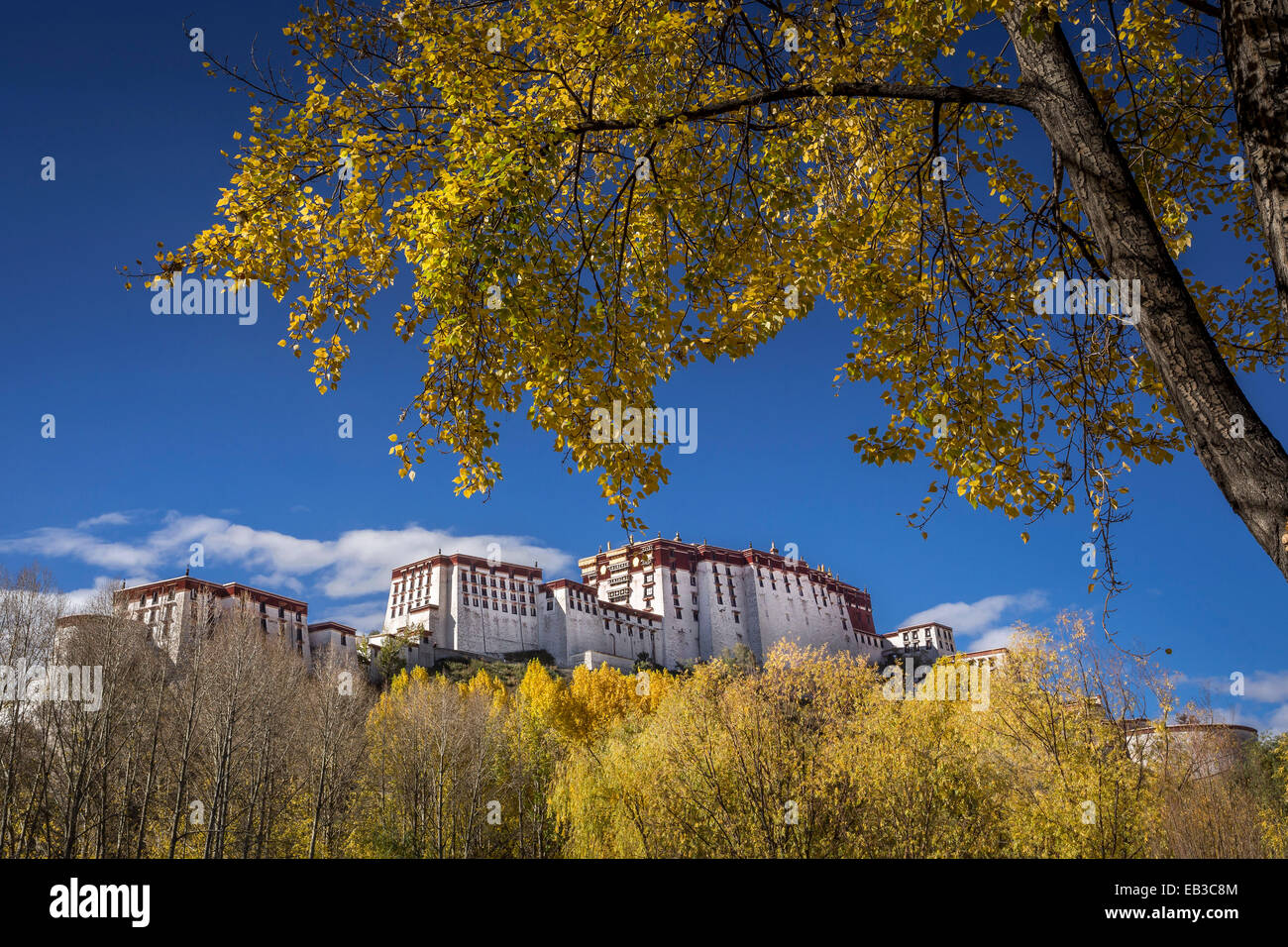 China, Tibet Autonomous Region, Potala Palace in autumn Stock Photo