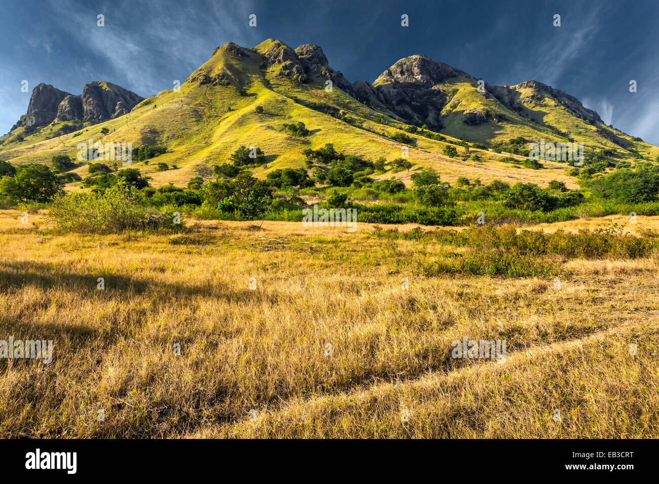 Indonesia, Flores Island, View of mountain from across withered grass of tropical savannah - Stock Image