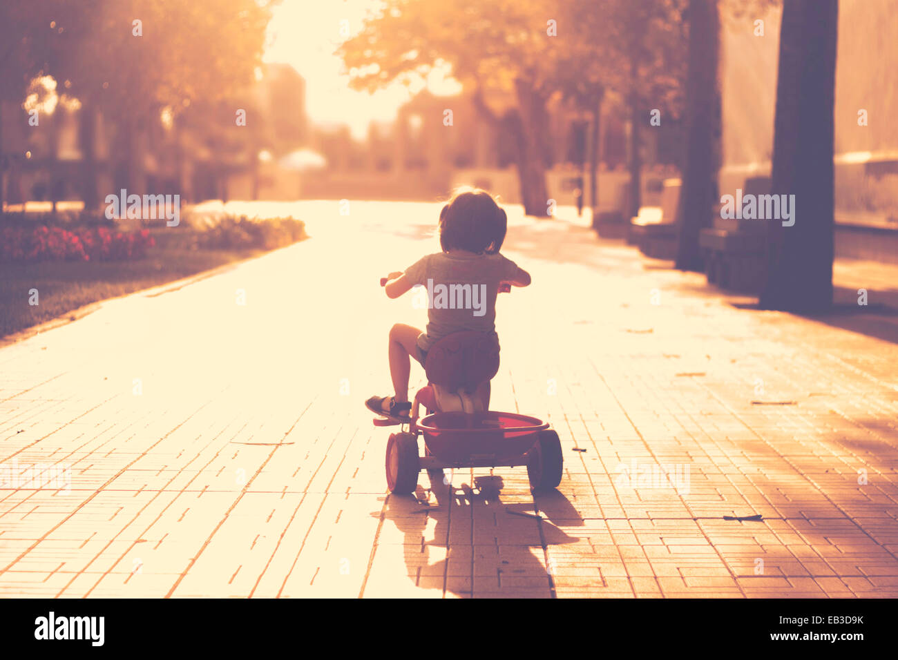 Little girl(2-3) on tricycle in park Stock Photo