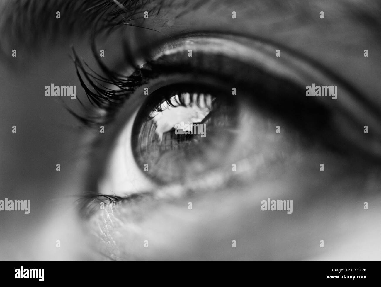 Close up of a woman's eye - Stock Image