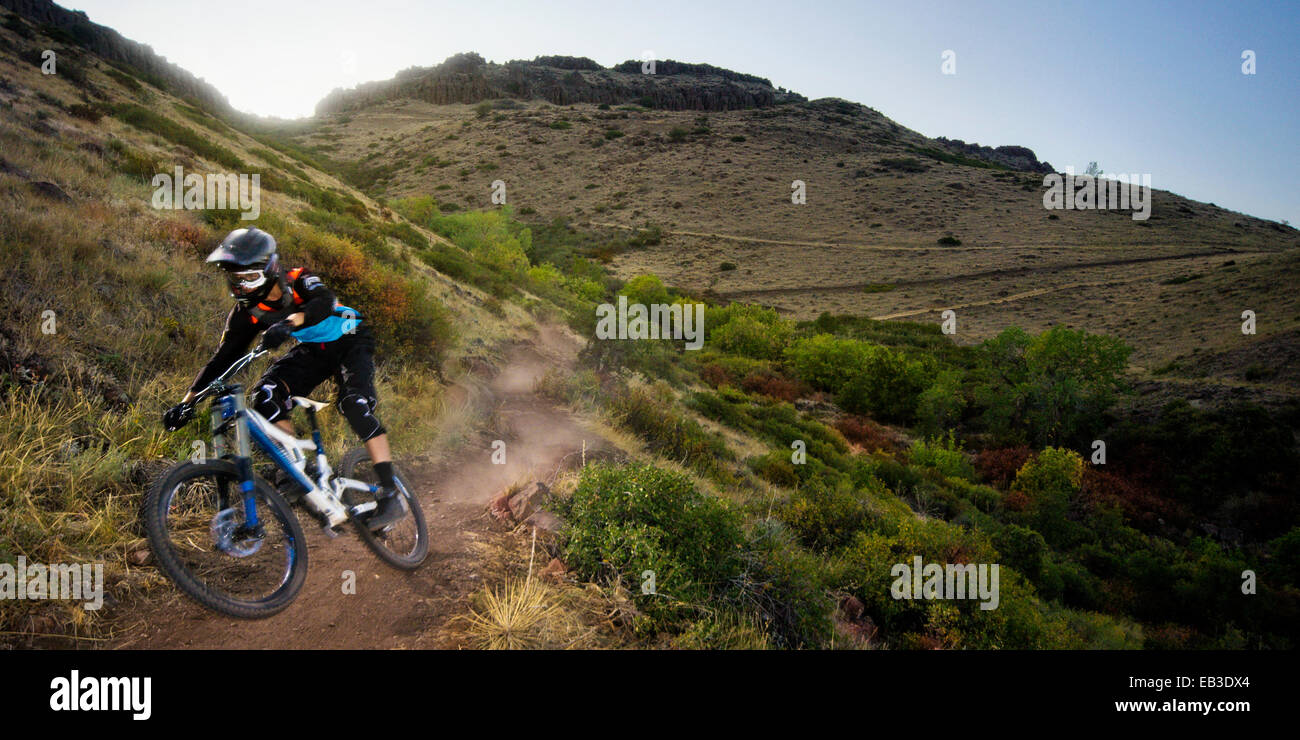 USA, Colorado, Jefferson County, Golden, Mountain biker rides down leaving cloud of dust - Stock Image