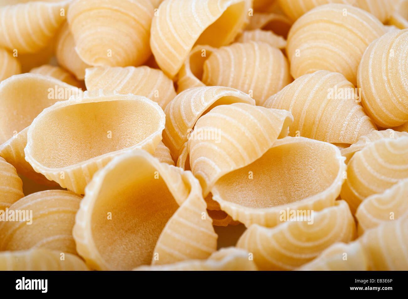 Group of conchiglie italian pasta - Stock Image