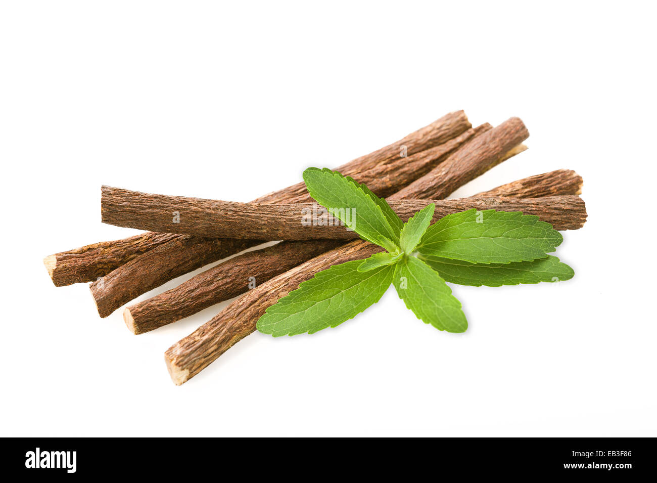 Roots licorice and stevia isolated on white - Stock Image