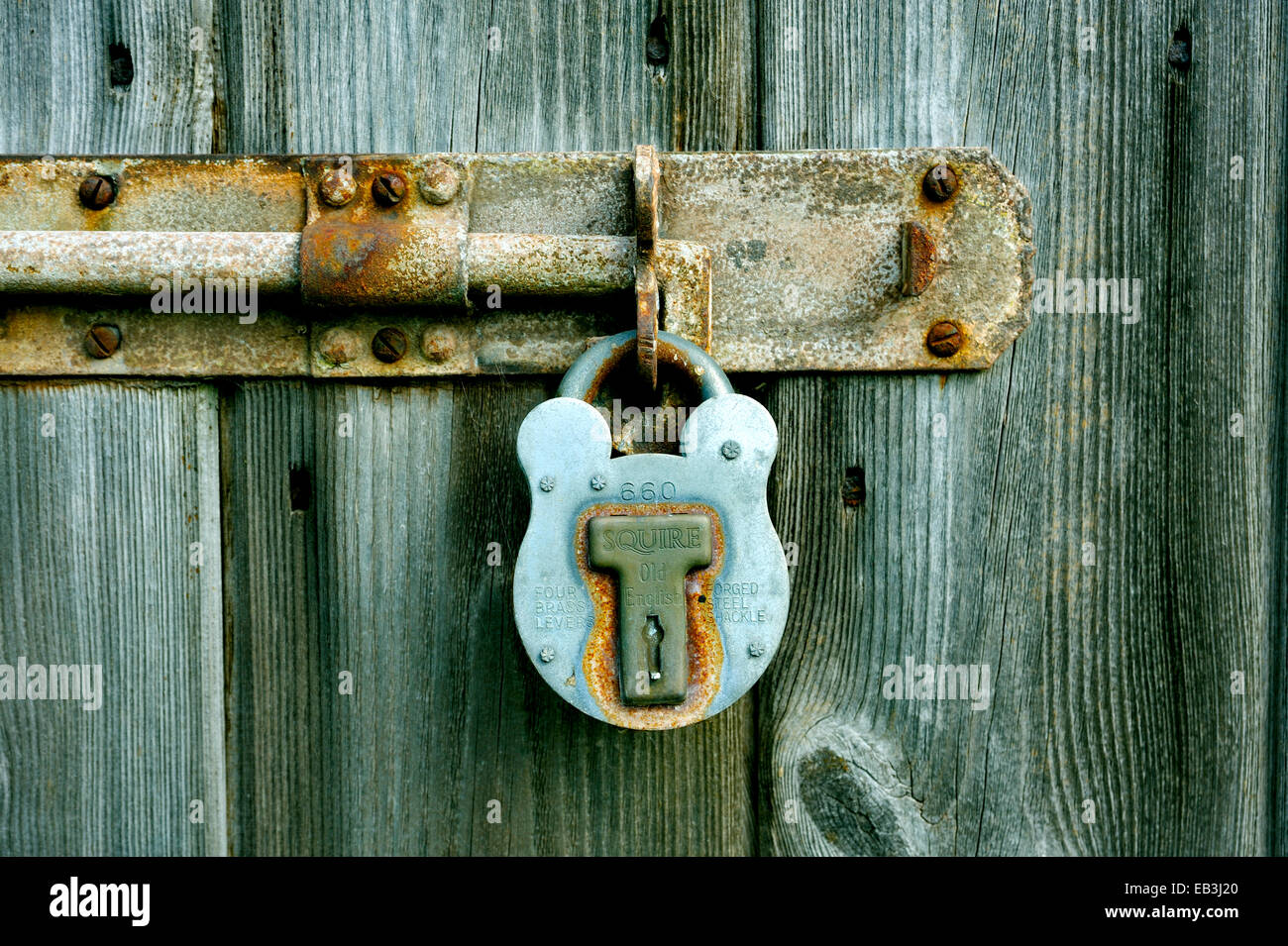 OLD PADLOCK MADE FROM METAL LOCKING AN OLD BOLT ON A WOODEN DOOR - Stock Image