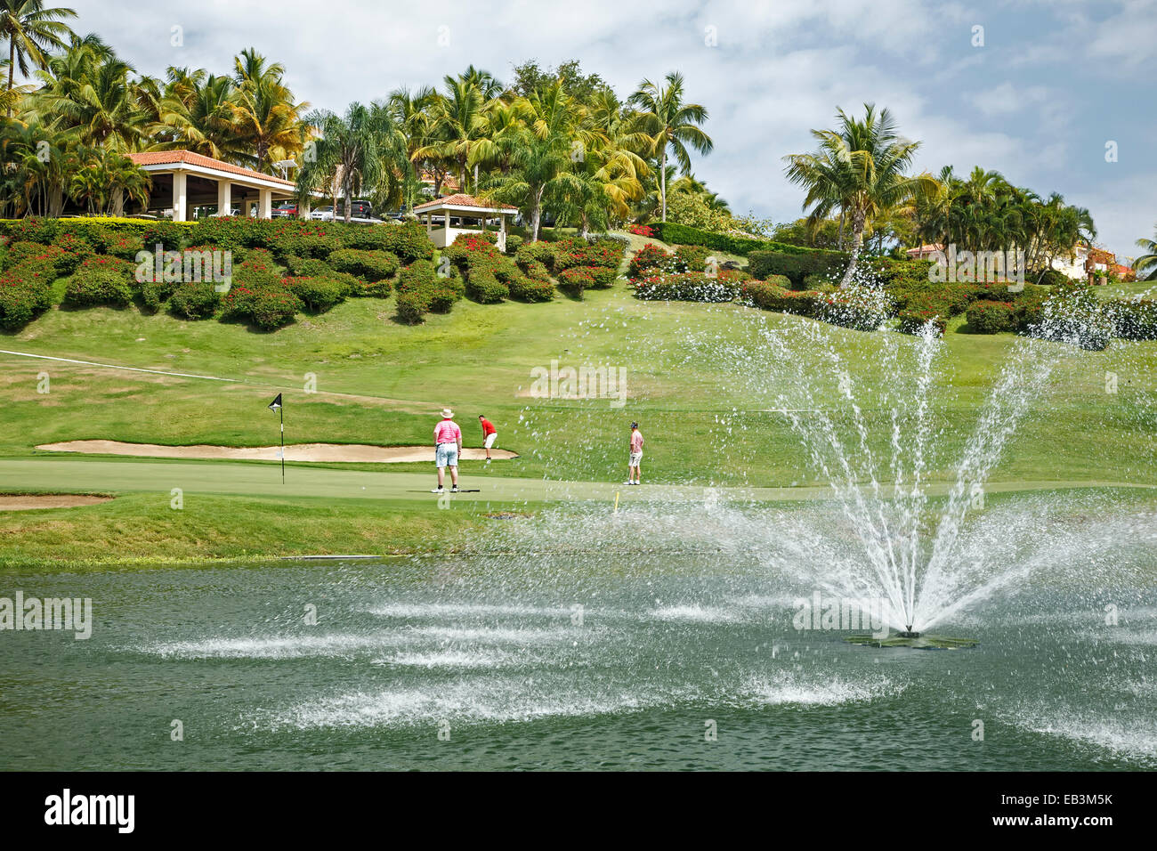 Golfers on green, El Conquistador Golf Course, Fajardo, Puerto Rico - Stock Image