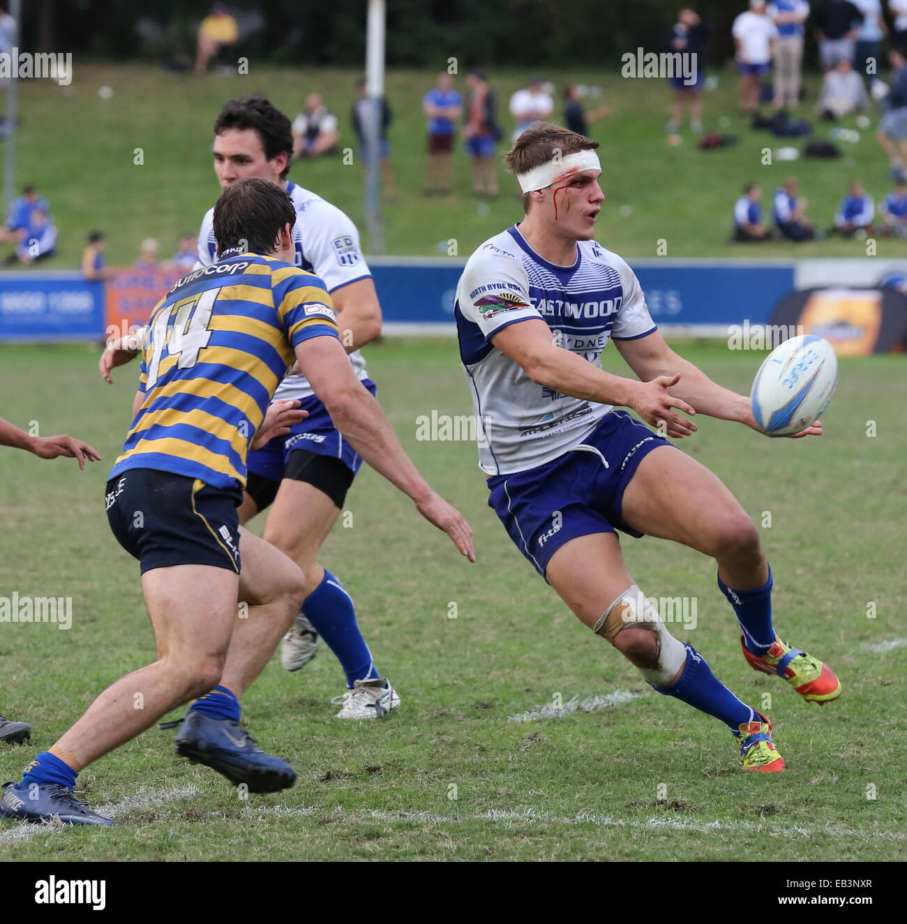 A bloody Tom Hill of Eastwood attacks the Sydney University Defence. Shute Shield 2014. - Stock Image