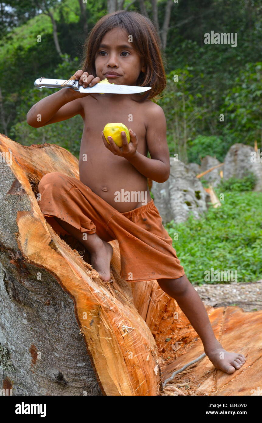 Young boy on the outskirts of Aileu, East Timor. - Stock Image