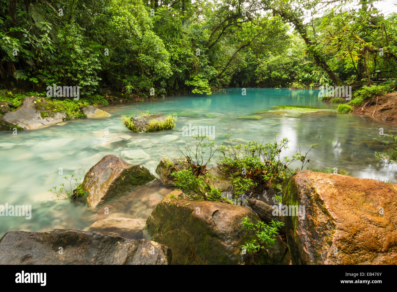 The cerulean blue waters of the 'Blue Lagoon' on the Rio Celeste in Volcan Tenorio National Park, Costa - Stock Image