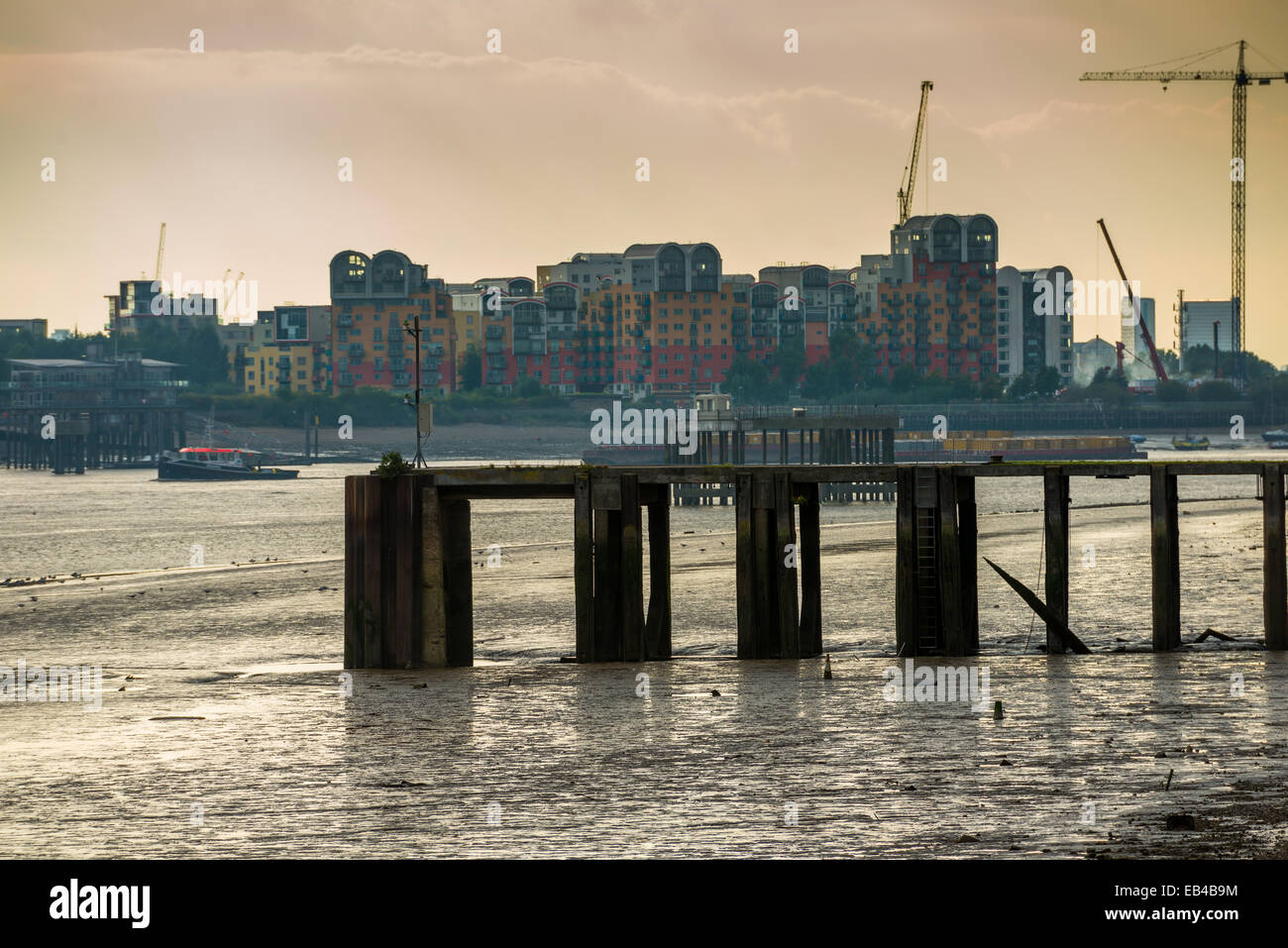 Tide out on the River Thames revealing mud banks; looking towards modern residential flats and appartments in Greenwich, - Stock Image