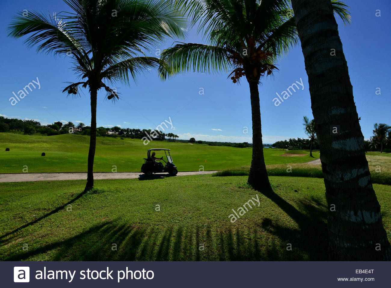 A person drives a golf cart at the golf course at the Romana Country Club. - Stock Image