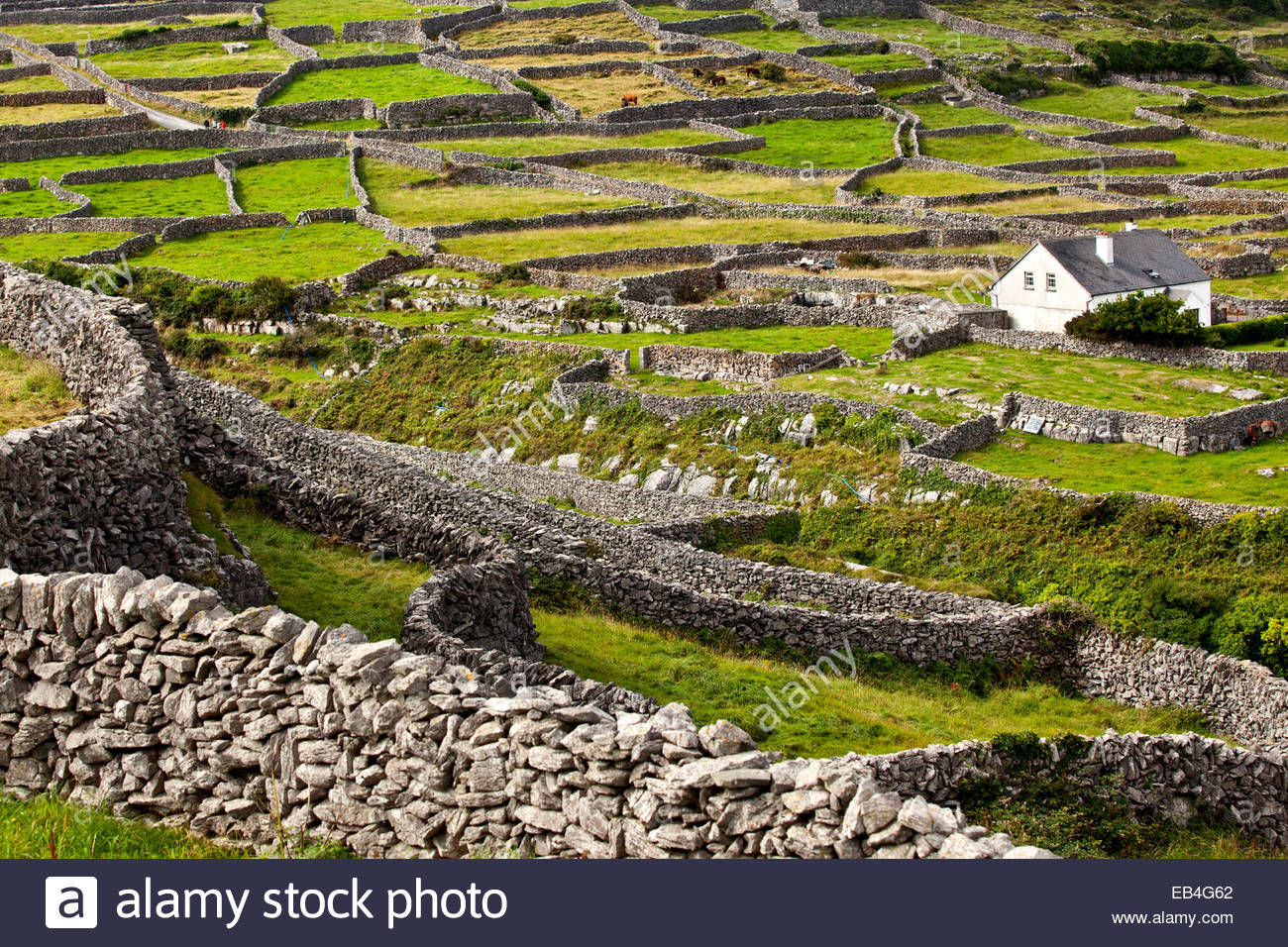 Stonewall architecture around the Aran Islands. - Stock Image