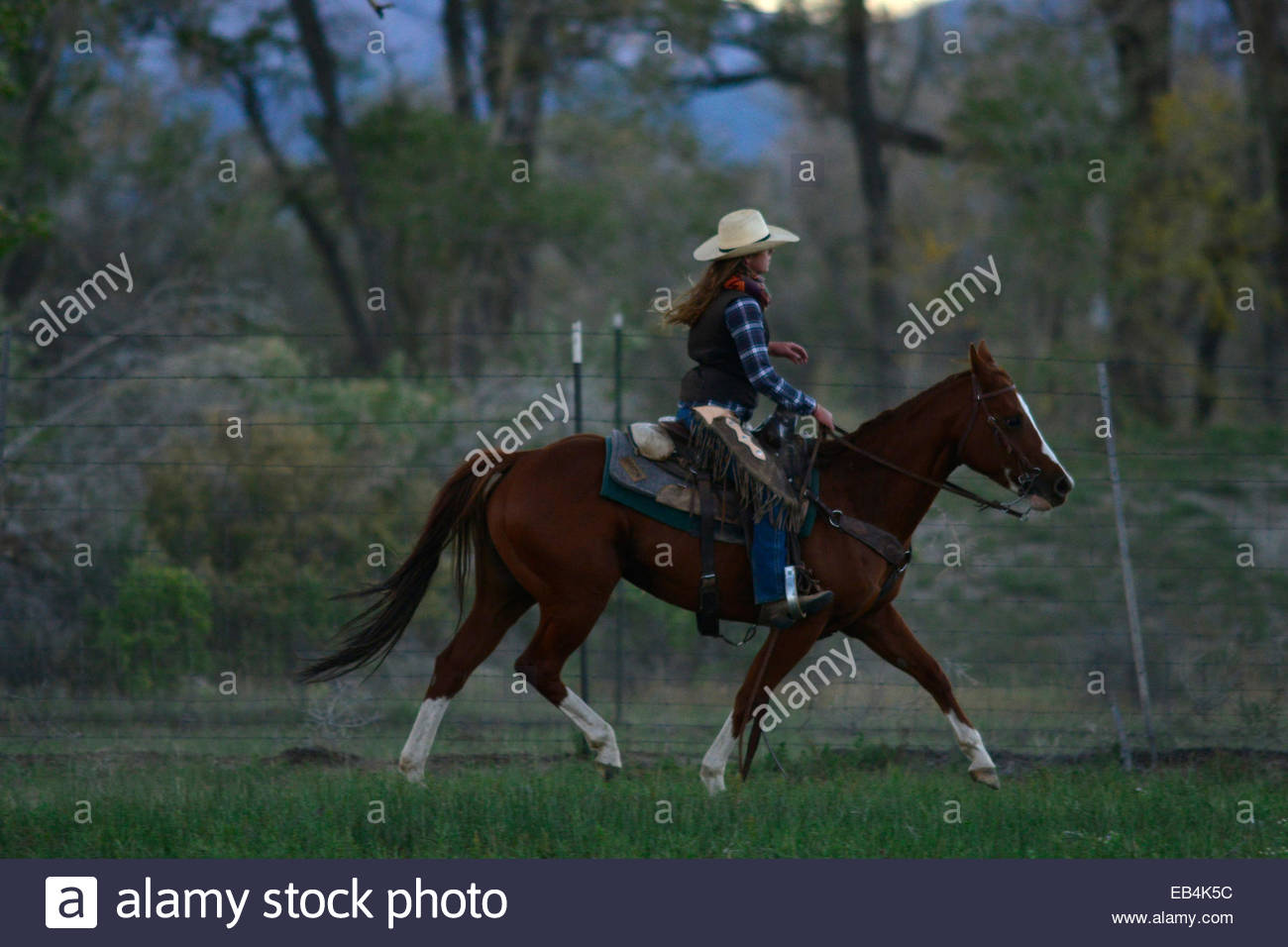 A woman rides a horse in a fenced in pasture on a ranch. - Stock Image