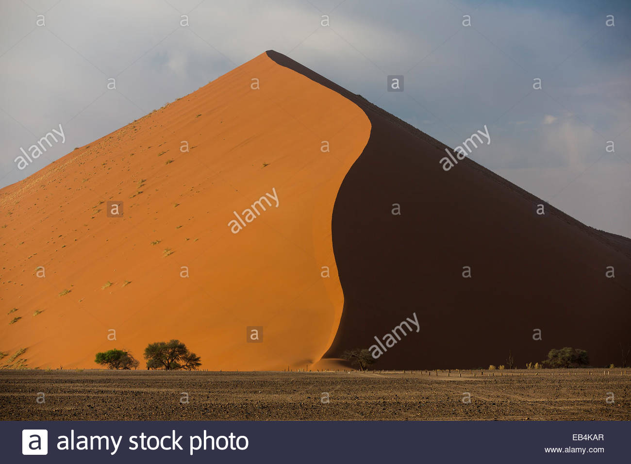 A towering sand dune of immense proportions in sunlight and shadow, in the Namib Desert. - Stock Image