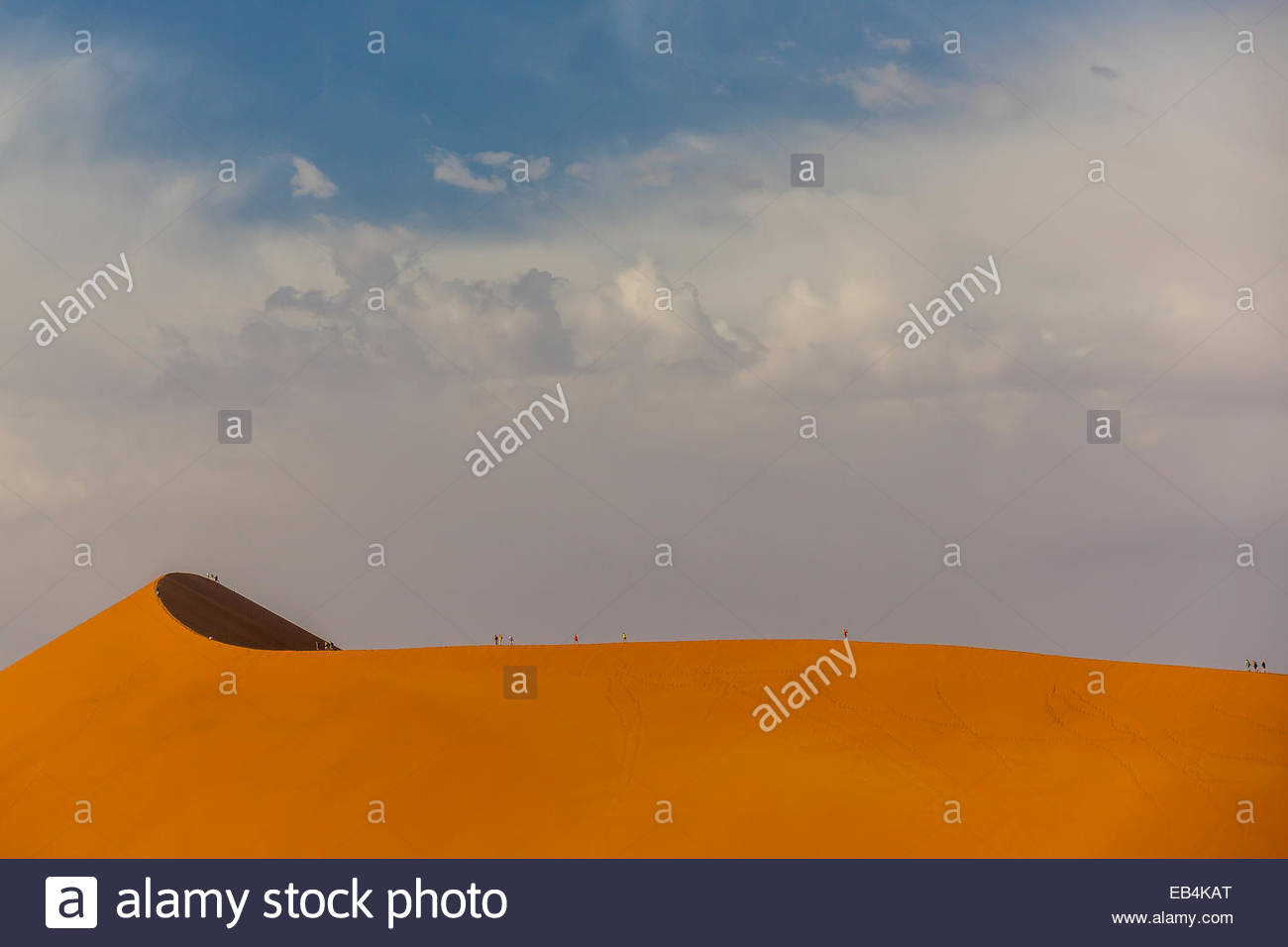 Ant-sized tourists walking along the crest of immense Dune 45 in the Namib Desert. - Stock Image