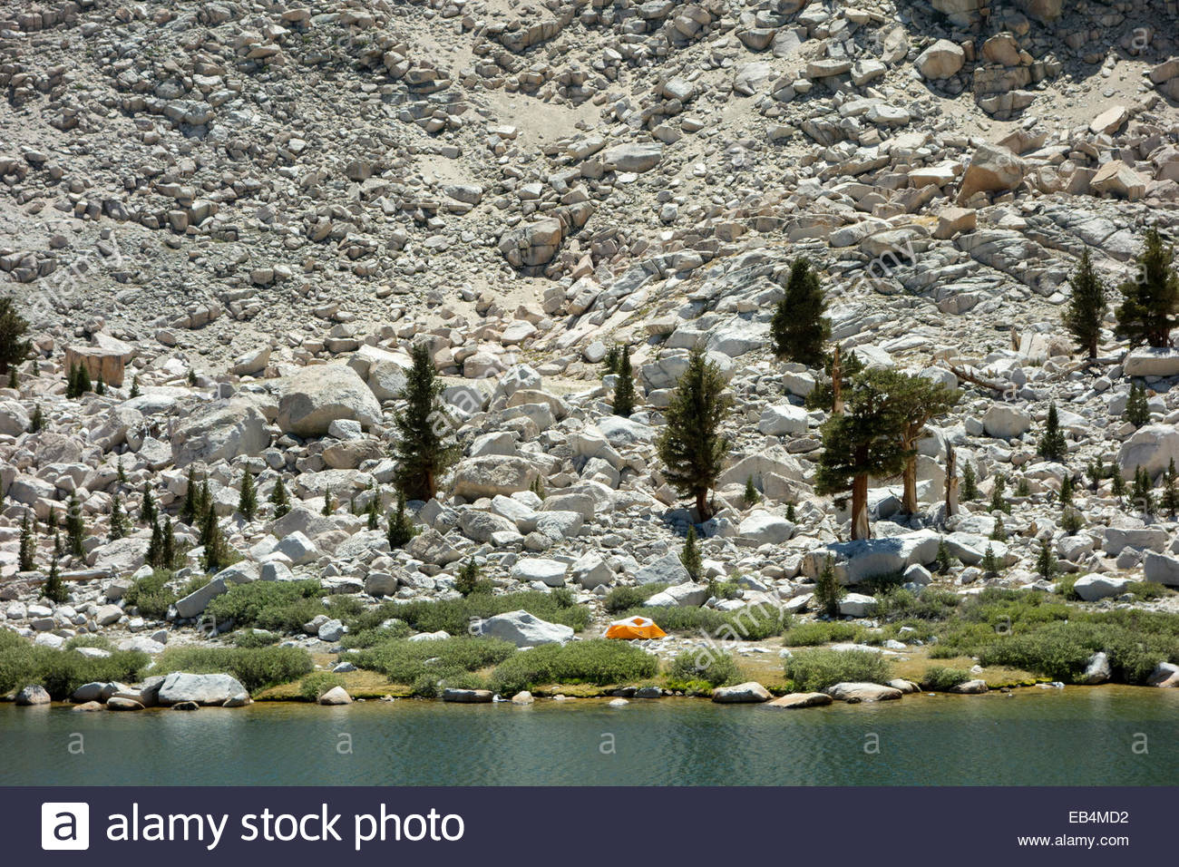 Tent pitched at bottom of rock slide in seismically active area of Sierra Nevada along Cottonwood Lake 3. - Stock Image