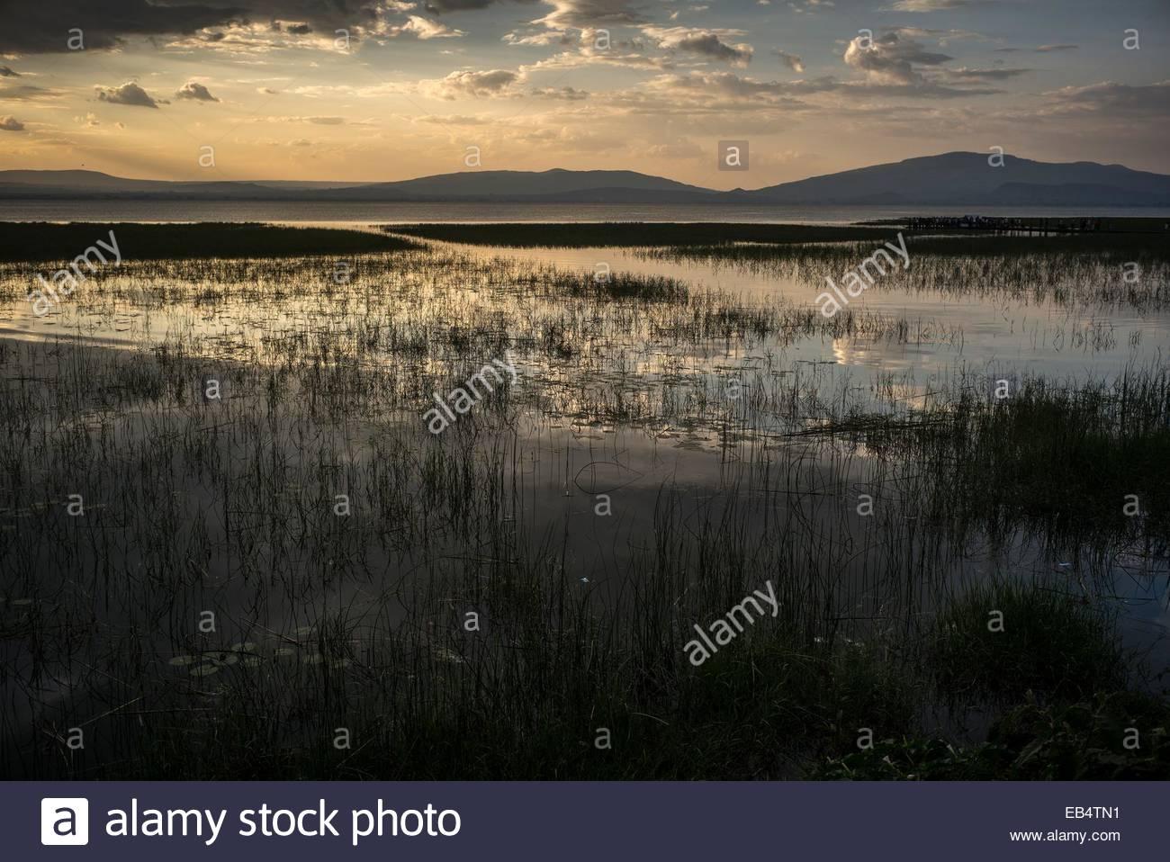 Lake Awasa at dusk. - Stock Image
