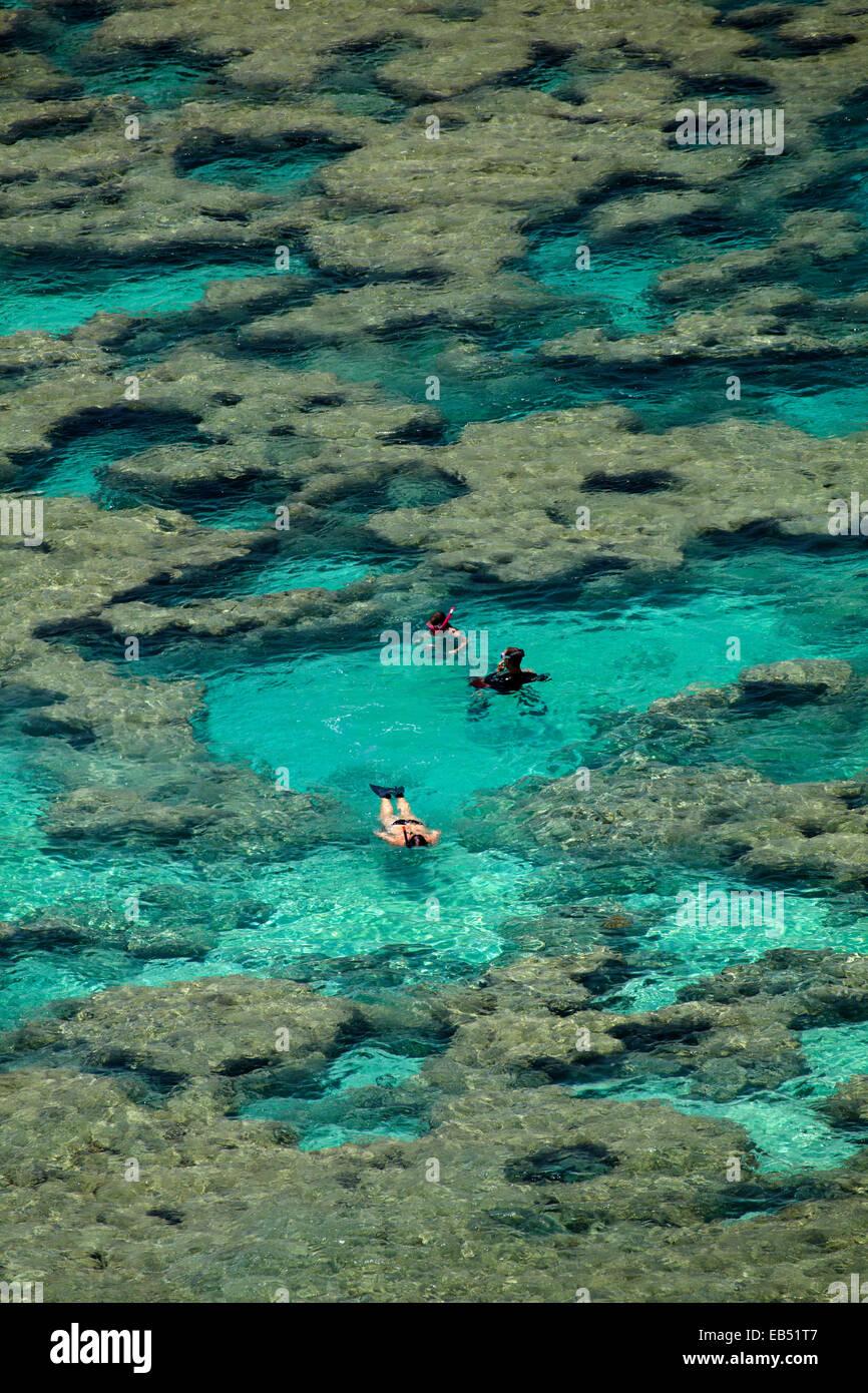 People snorkelling among coral reef at Hanauma Bay Nature Preserve, Oahu, Hawaii, USA - Stock Image