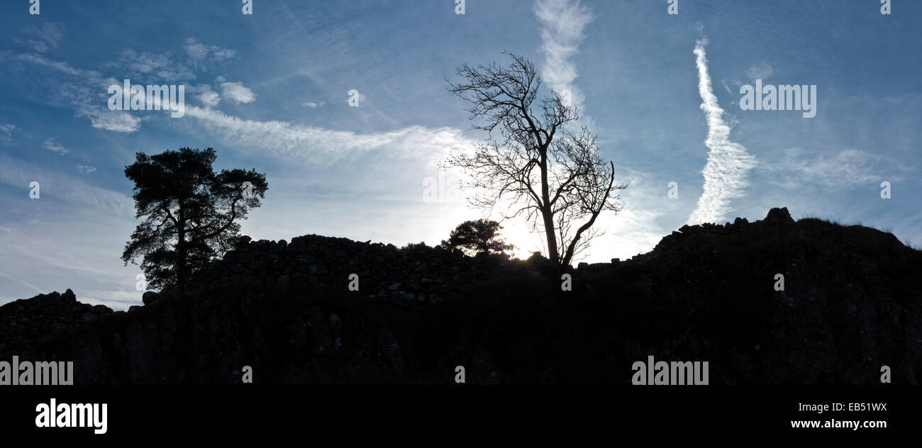 Panoramic sillhouette of a rocky outcrop with one tree in leaf the other defoliated against a dark blue sky with - Stock Image