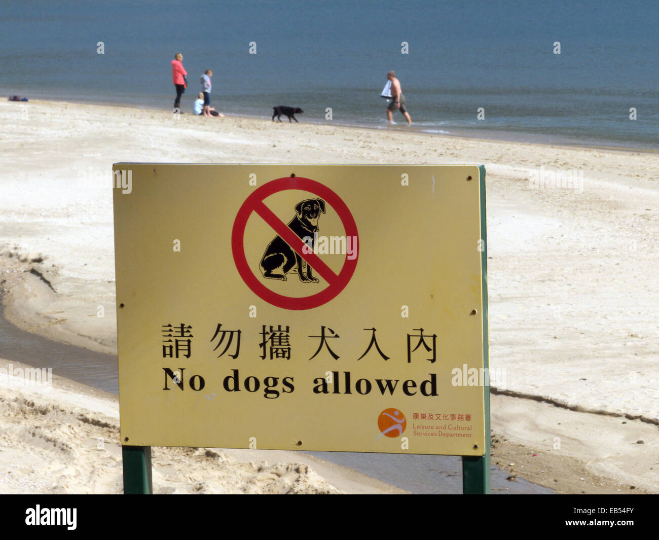 China Hong Kong Lantau island Silvermine Bay Mui Wo No dogs allowed. Some foreigners brought their dog on the beach - Stock Image