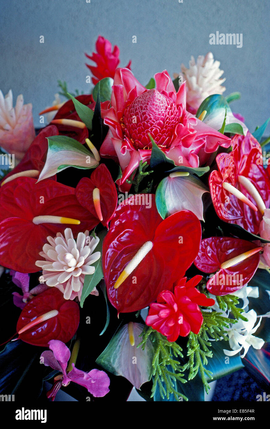 Red ginger hawaiian flower stock photos red ginger hawaiian flower this bouquet created in hawaii usa features some favorite flowers of the islands including izmirmasajfo