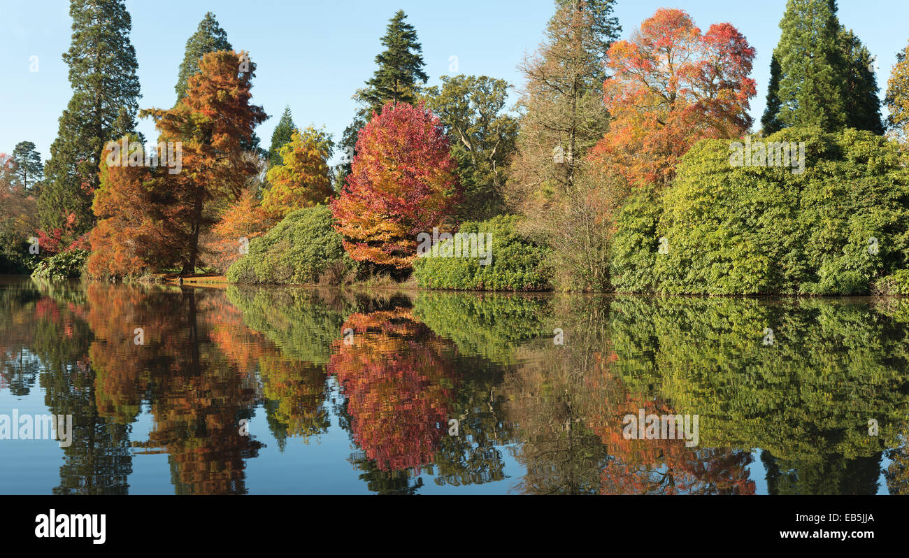 Autumnal colors changing leaves reflected in calm and serenity of peaceful mirror like lake water surface - Stock Image