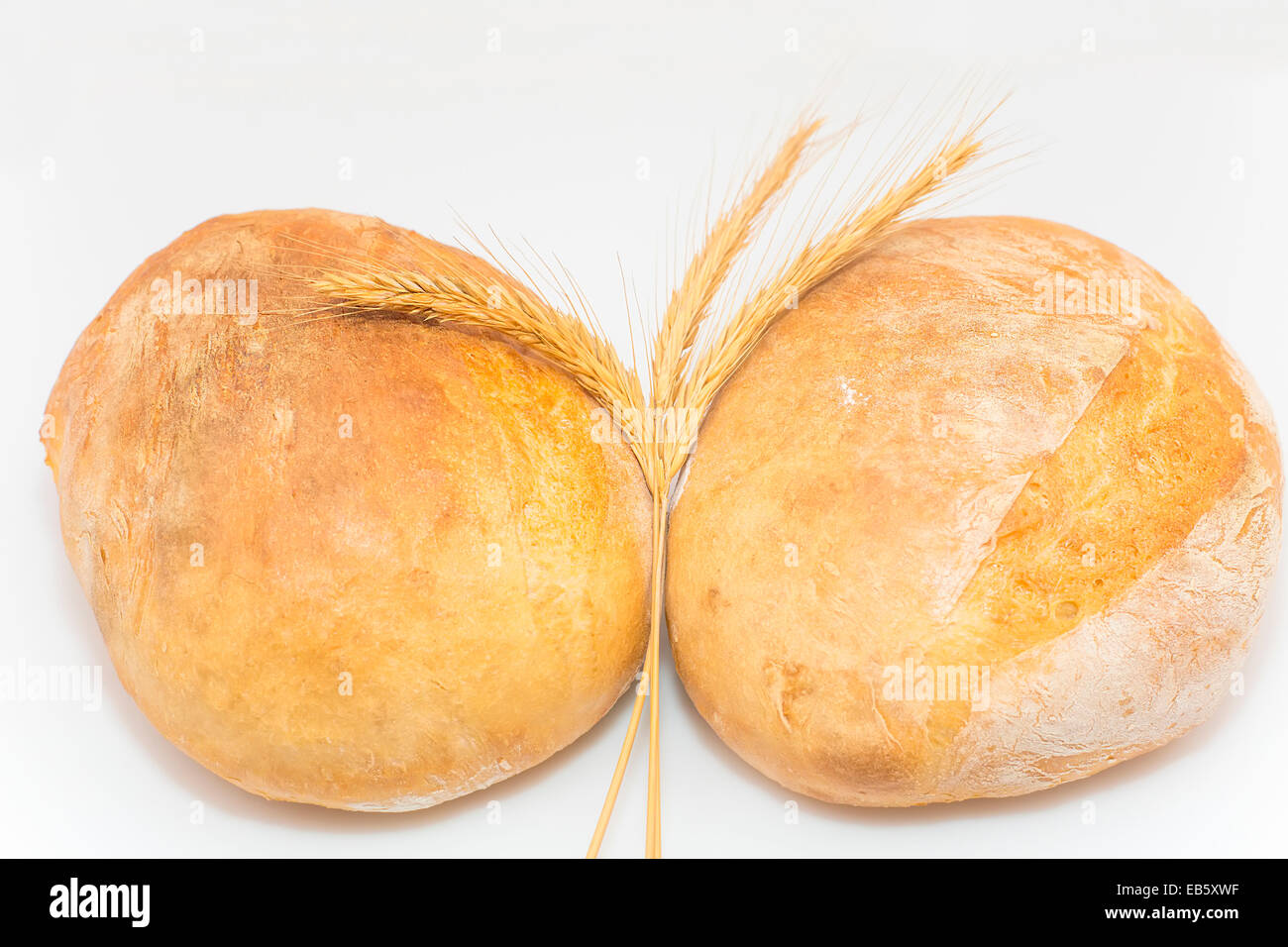 ears of corn wheat on a background Ukrainian bread loaves of - Stock Image