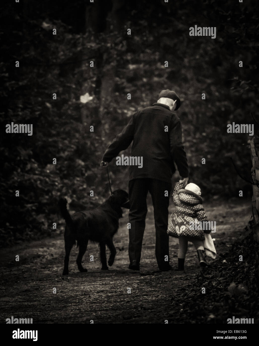 Older man with his hands full - grandad, grandchild and dog - Stock Image
