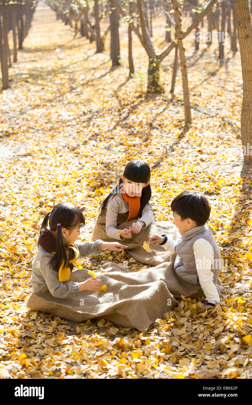 Three children playing and talking in autumn woods - Stock Image