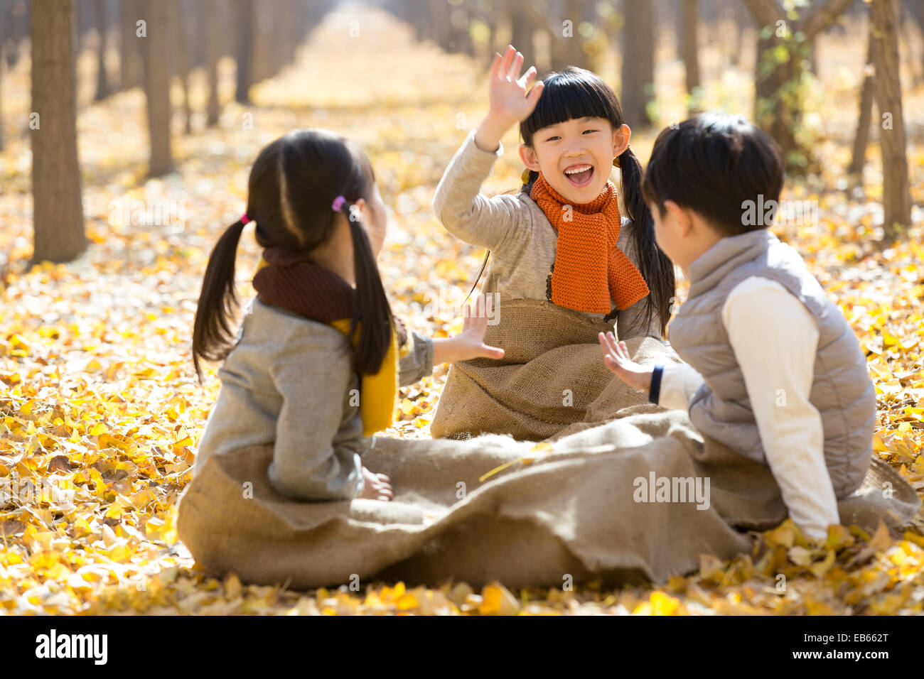 Three children playing in autumn woods - Stock Image