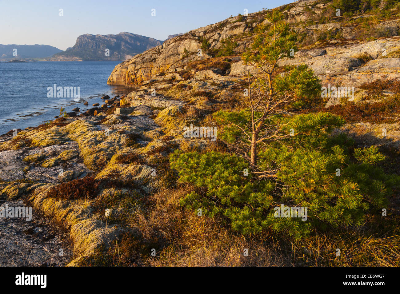 Flatanger, Nord-Trondelag, Norway, Europe. - Stock Image