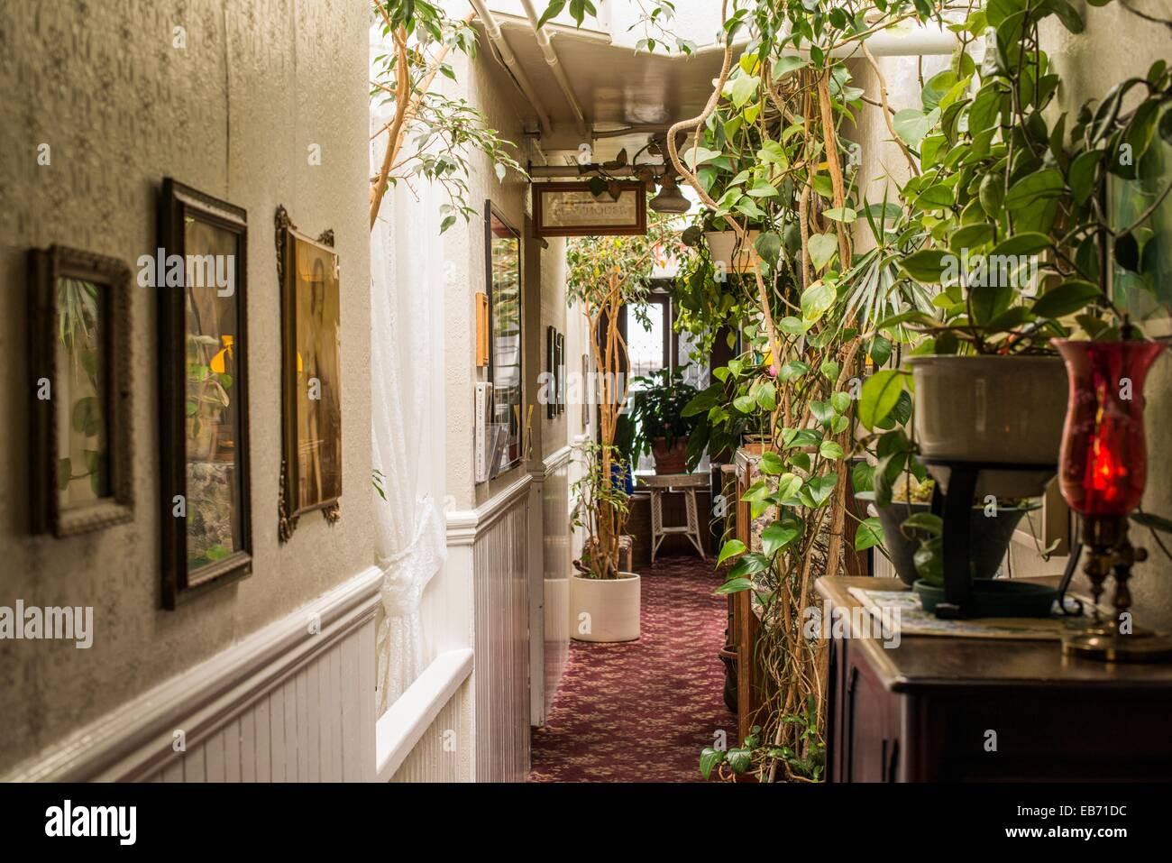 Hall In The San Remo Hotel San Francisco California Usa Stock Photo Alamy