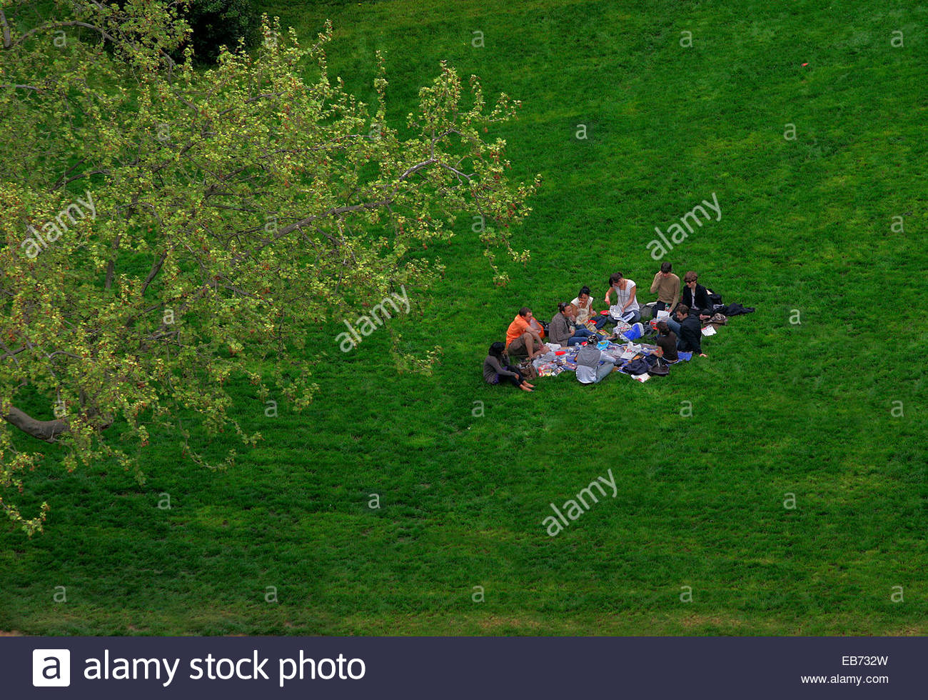 Young people having picnic in the park of the Buttes-Chaumont, Paris. - Stock Image