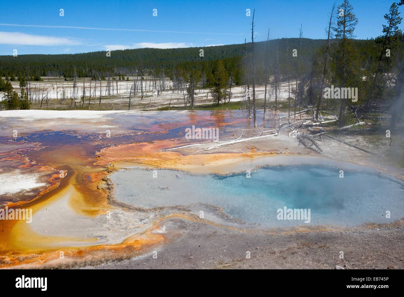 clear hot pool of water with orange calcium deposits in Yellowstone ...