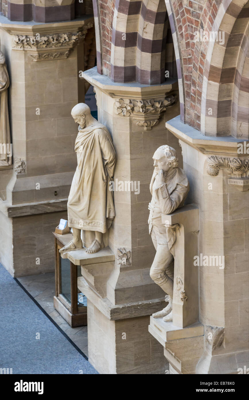 Statues of famous thinkers and scientists line the walls at The Oxford University Natural History Museum. The OUNHM - Stock Image