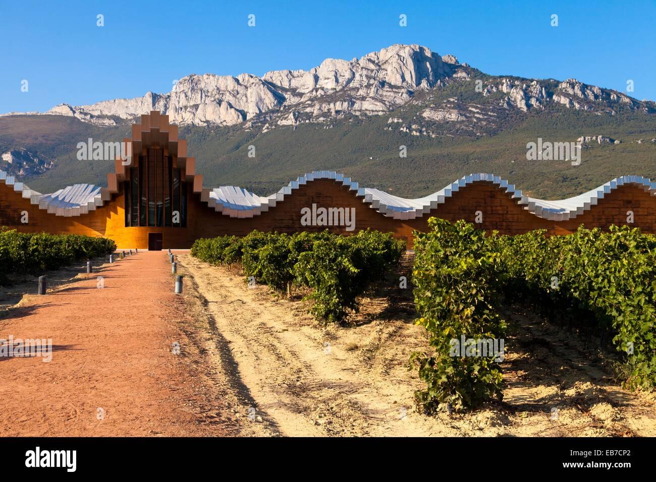 Bodegas Ysios Wine Cellar Built By Santiago Calatrava Laguardia